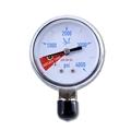 Low N2 Pressure Gauge